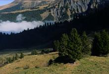 16_skier