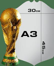 a3-size